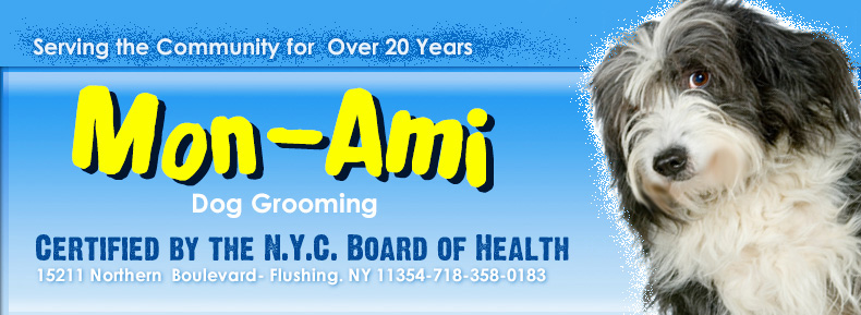 Welcome to Mon-Ami Dog Grooming!